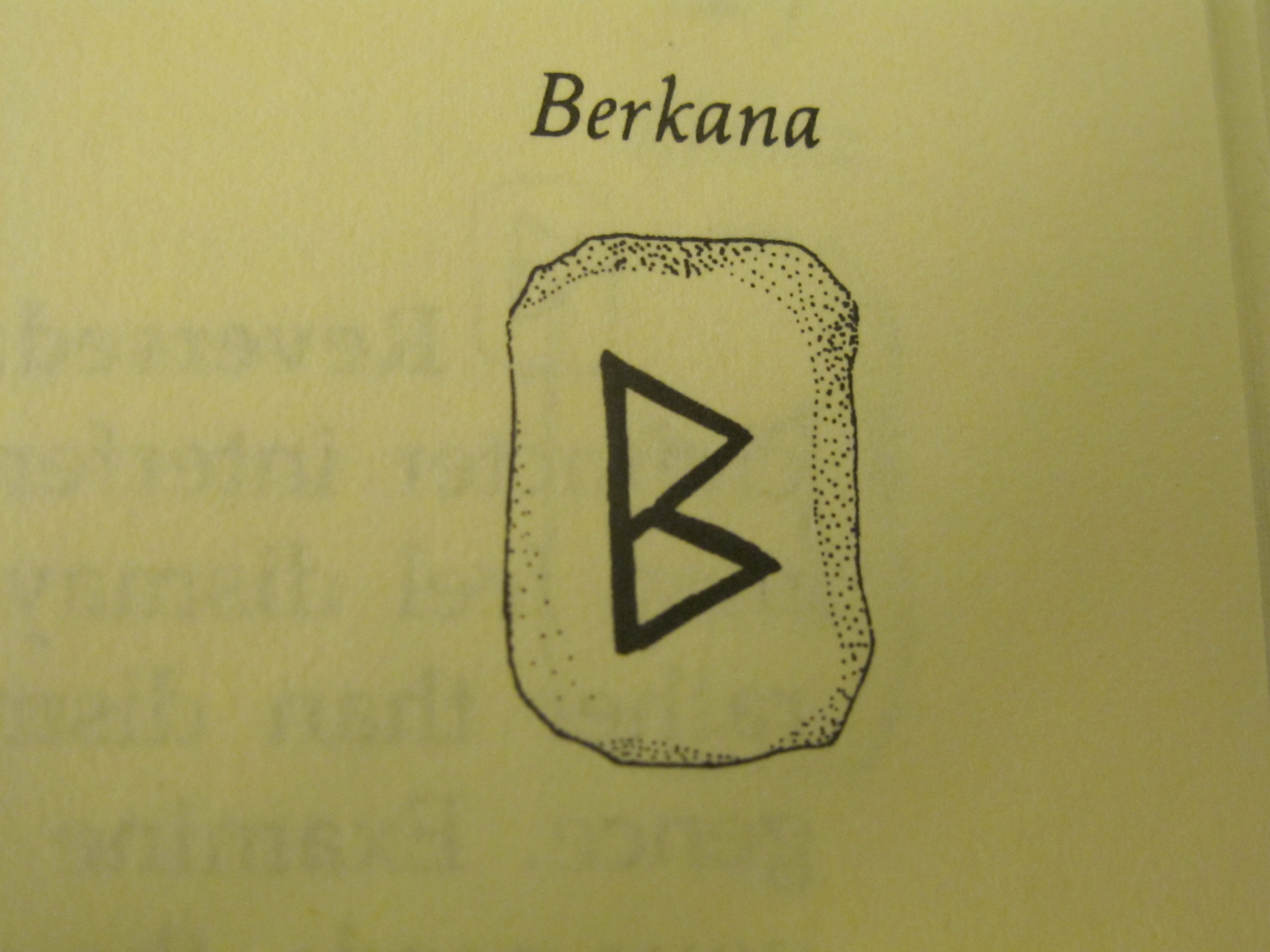 July 2013 living chapters this rune is the berkana rune it represents growth rebirth and birch tree the growth may occur in affairs of the world family matters buycottarizona Choice Image
